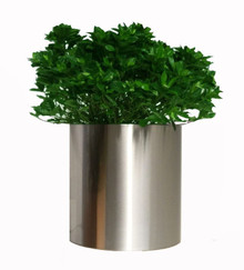 Knox Stainless Steel Cylinder Planter 12x12x12