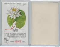 F213-3 Coca Cola, Nature Study, Wild Flowers, 1920's,  #9 Water Lilly