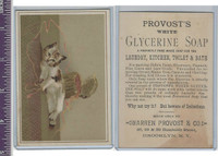 Victorian Card, 1890's, Provost Soap, Cat With Yarn