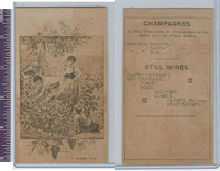 Victorian Card, 1890's, Vintage Time Champagnes, Picking Grapes