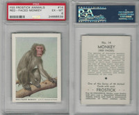 F55 Frostick, Animal Cards, 1933, #14 Red Faced Monkey, PSA 6 EXMT