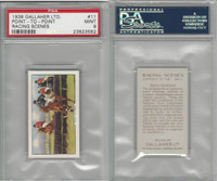 G12-94 Gallaher, Racing Scenes, 1938, #11 Point-To-Point, PSA 9 Mint