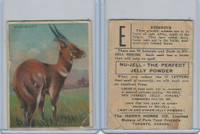 FC1, Harry Horne Co, Nu-Jell, Animals And Birds, 1925, Bushbuck