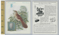 H684 Singer Sewing, American Song Birds, 1926, Brown Thrasher