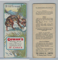 V2 Cowan, Animal Cards, 1920's, #19 Coyote, Royal Milk Chocolate
