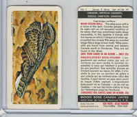 FC34-10 Brook Bond, Canadian/Am. Songbirds, 1966, #1 Whip-Poor-Will