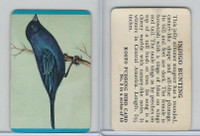 F218-2 Kosto Pudding, Bird Cards, 1964, #3 Indigo Bunting