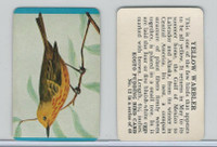 F218-2 Kosto Pudding, Bird Cards, 1964, #12 Yellow Warbler