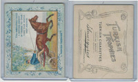 T62 Turkish Trophies, Fortune Series, 1910, You Absolutely Need, Horse