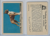 F279-5 Quaker, Challenge of the Yukon, Dog Cards, 1950, Boxer