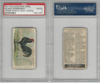 E31 Philadelphia, Zoo Cards, Game Fowl, 1907, Black Hamburgh, PSA 2 Good