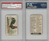 E31 Philadelphia, Zoo Cards, Game Fowl, 1907, Brown Leghorn, PSA 4 VGEX