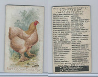 E31 Philadelphia, Zoo Cards, Game Fowl, 1907, Buff Cochin China Hen