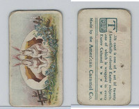 E45 American Caramel, Easter Subjects, 1920's, Two Rabbits In Egg