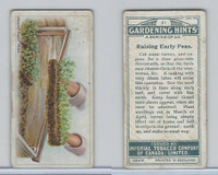 C15 Imperial Tobacco, Gardening Hints, 1923, #21 Raising Early Peas