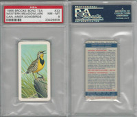 F450-7 Brook Bond, Canadian/Am Songbirds, 1966, #33 Meadowlark, PSA 8 NMMT