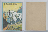 V2 Cowan, Animal Cards, 1920's, (Trimmed) #11 Mountain Goat