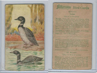 V75 Patterson Candy, Bird Cards, 1924, Loon