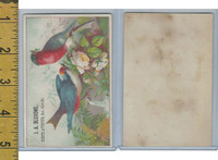 Victorian Card, 1890's, Bluxome, J.A., Birds, Flowers, Waterfall