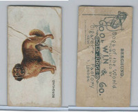 N163 Goodwin, Dogs of World, 1890, Berghund