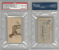 N163 Goodwin, Dogs of World, 1890, Chinese Crested, PSA 4 VGEX