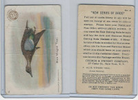 J4, Church & Dwight, New Series of Birds, 1908, #3 Blue Winged Teal