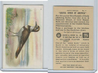 J9-2, Church & Dwight, Useful Birds America 6th Ser., 1925, #4 Killdeer