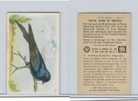 J9-2, Church & Dwight, Useful Birds America 6th Ser., 1925, #10 Purple Martin