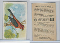 J9-3, Church & Dwight, Useful Birds America 7th Ser., 1925, #12 Scarlet Tanager