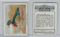 C1 Imperial Tobacco, Birds, Beasts, & Fishes, 1923, #2 Carolina Duck