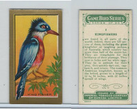 C14 Imperial Tobacco, Game Bird Series, 1910, #2 Kingfisher