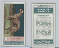 C7 Imperial Tobacco Company, Dog Series, 1920's, #7 Deerhound