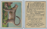 FC1, Harry Horne Co, Nu-Jell, Animals And Birds, 1925, Cheetah