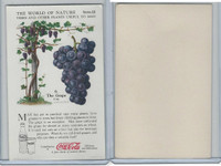 F213-3 Coca Cola, Nature Study, Trees & Plants, 1920's, #6 Grape