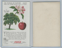 F213-3 Coca Cola, Nature Study, Trees & Plants, 1920's, #7 Apple