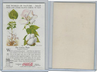 F213-3 Coca Cola, Nature Study, Trees & Plants, 1920's, #9 Cotton Plant