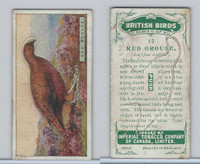 C4 Imperial Tobacco, British Birds, 1923, #13 Red Grouse