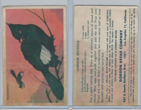 D39-2a, Gordon Bread, Recipe - California Birds, 1940's, Phainopepla