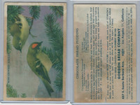 D39-2a, Gordon Bread, Recipe - California Birds, 1940's, Ruby Cr. Kinglet