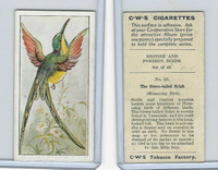 C130-24 CWS, British & Foreign Birds, 1938, #25 Green Tailed Sylph