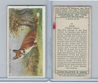 P72-153 Player, Animals of Countryside, 1939, #11 Fox