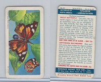 F450-6 Brook Bond, Butterflies North America, 1965, #25 Snout Butterfly