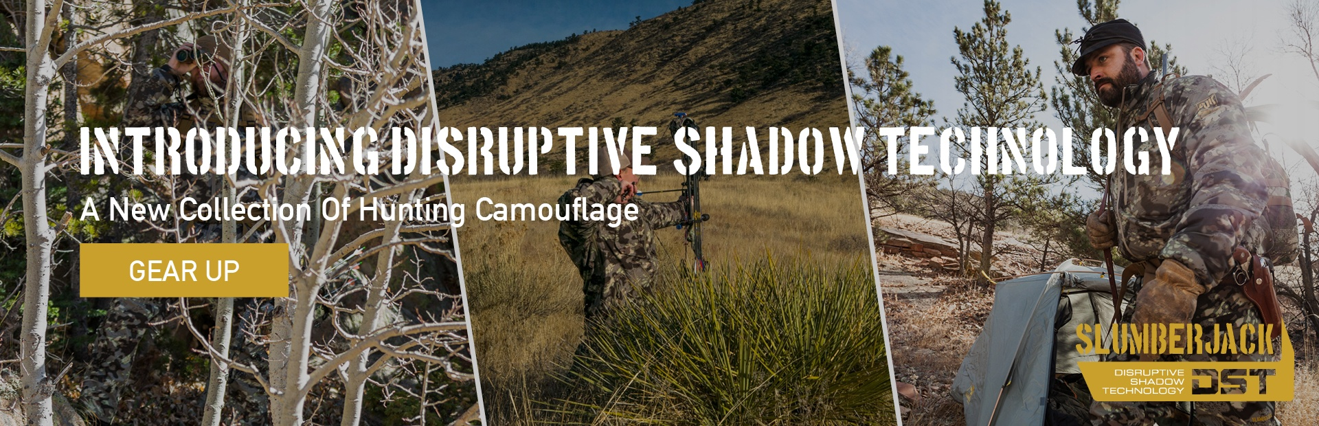 Introducing Disruptive Shadow Technology