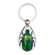 Chafer Beetle Key Chain