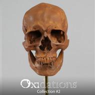 Oxidations Skull #1
