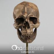 Oxidations Skull #5