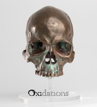 01-skull-103-front-view-evolution-store