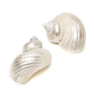 Silver Mouth Turban - Seashell