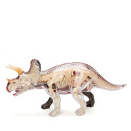 Anatomical Snap-Together Kit, Triceratops