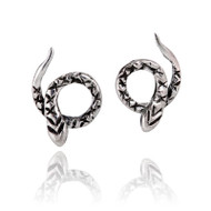 Coiled Snake Stud Earrings